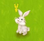 ヘイデイ 白ウサギ